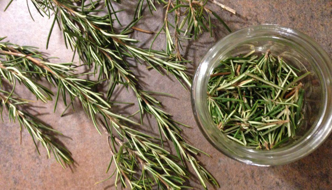 Rosmarin zählt auch zu grünem Blattgemüse