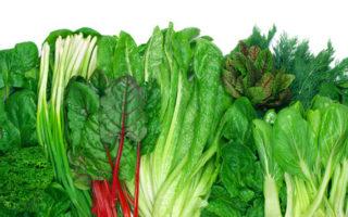 verschiedenes grünes Blattgemüse